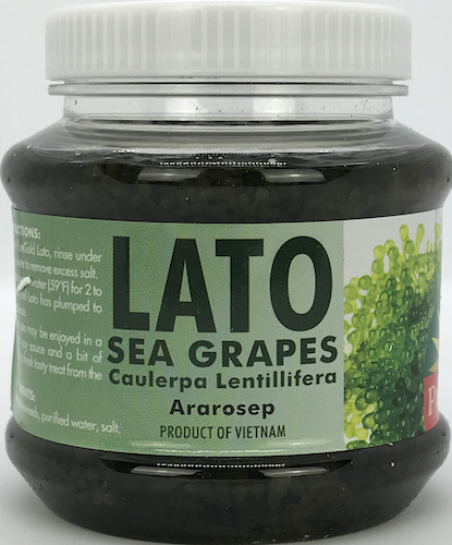 PureGold Lato (Sea Grapes)
